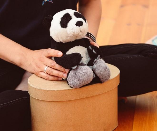 Foto Happy Panda auf der Kiste